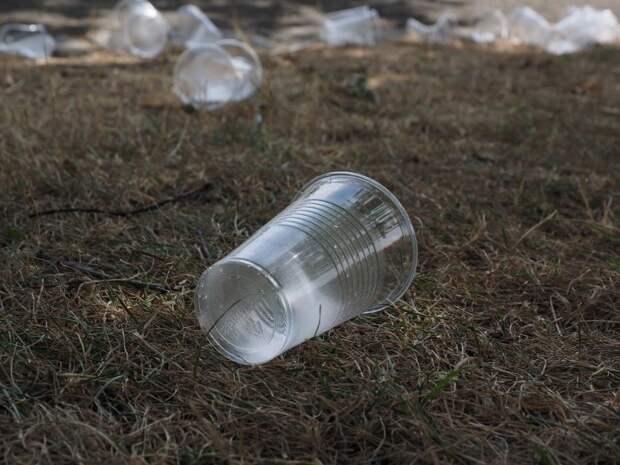 Засоренный мусором участок на улице Степана Супруна приведут в порядок