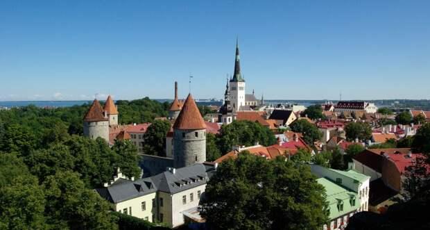 Эстонский политик призвал не злить «русского медведя»
