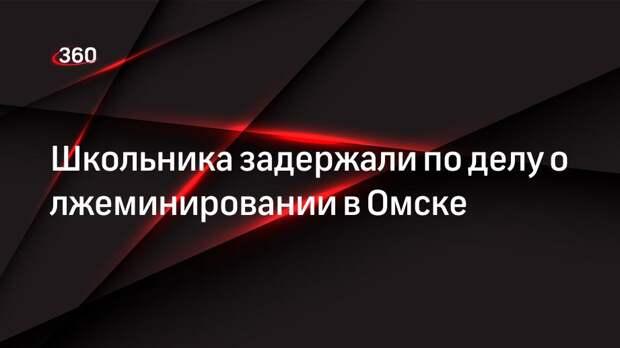 Школьника задержали по делу о лжеминировании в Омске