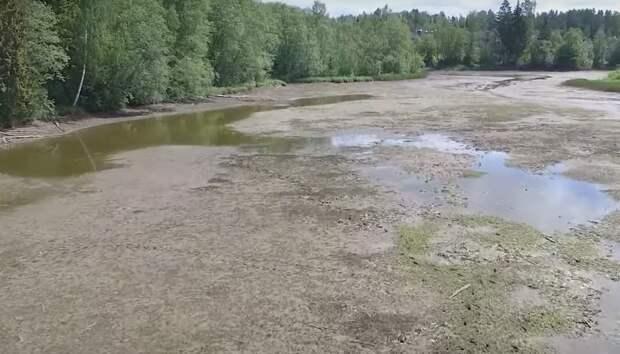 ВМосковской области у жителей двух деревень «украли реку»