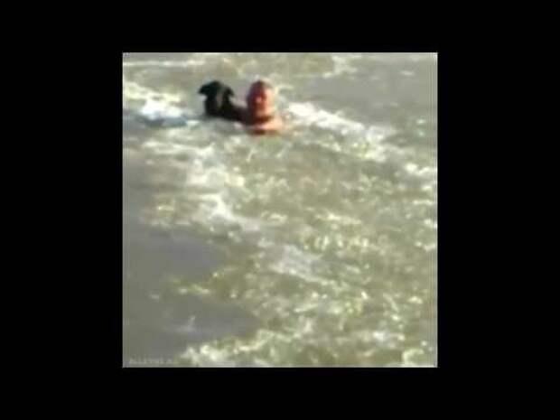 Парень спасает собаку из ледяной проруби