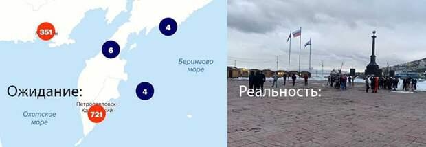 Ботов можно накрутить, но не отправить на митинги – сколько людей поддержало Навального на Дальнем Востоке