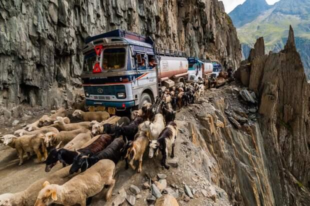 ТОП-20 самых опасных дорог в мире: право руля!