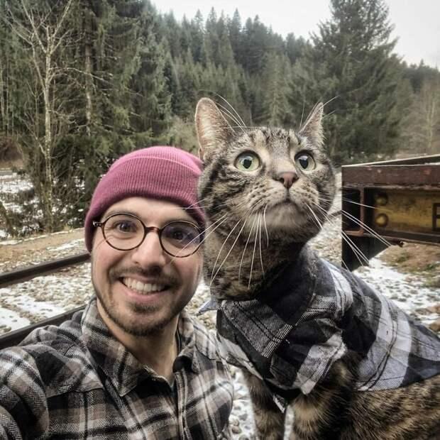 Кошка-путешественница Катод, чьим приключениям завидуют многие люди