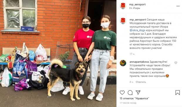150 килограмм корма собрали жители Аэропорта в приют для бездомных животных