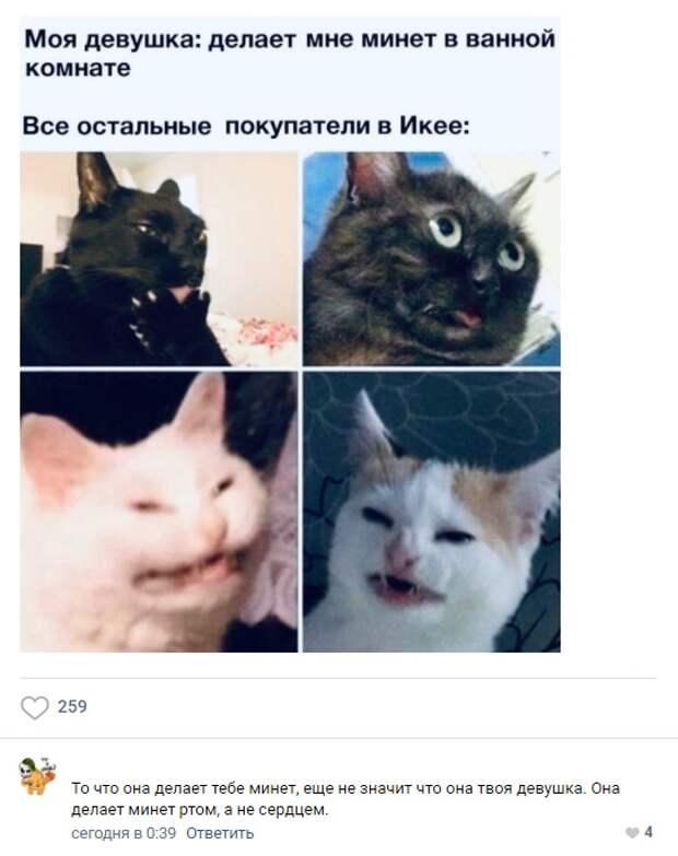 Пошлые картинки с забавными комментариями