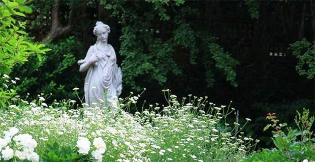 Дизайн сада в белых тонах