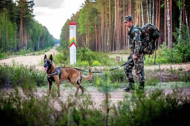 Награнице Литвы иБелоруссии после 3-дневного перерыва вновь поймали нелегалов