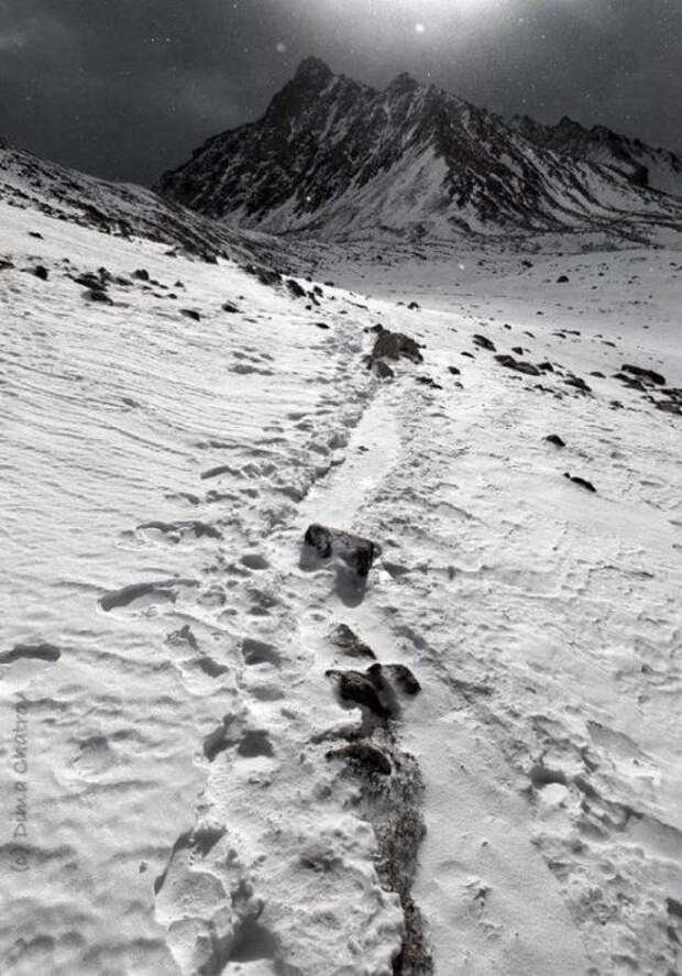 Эверест (Джомолунгма) — вершина мира мир, вершина, эверест