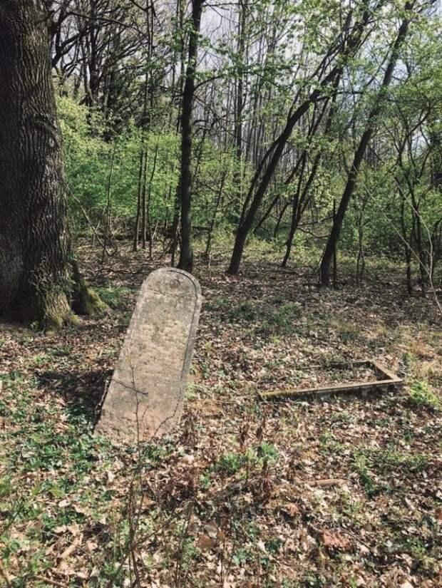 Одинокая заброшенная могила в лесу, Австрия