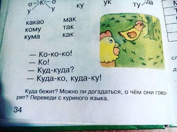 Свободно владею куриным языком бред, детские книги, для детей, литература, прикол