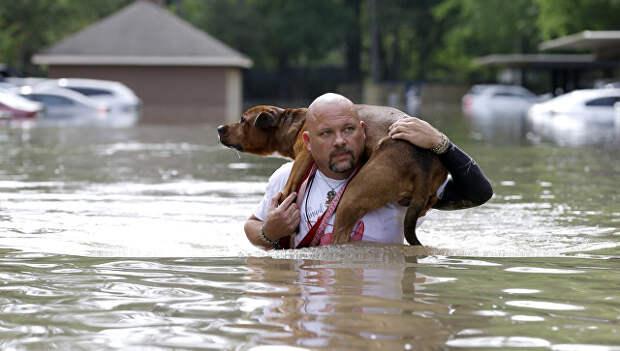Хозяин спасет свою собаку во время наводнение в Хьюстоне