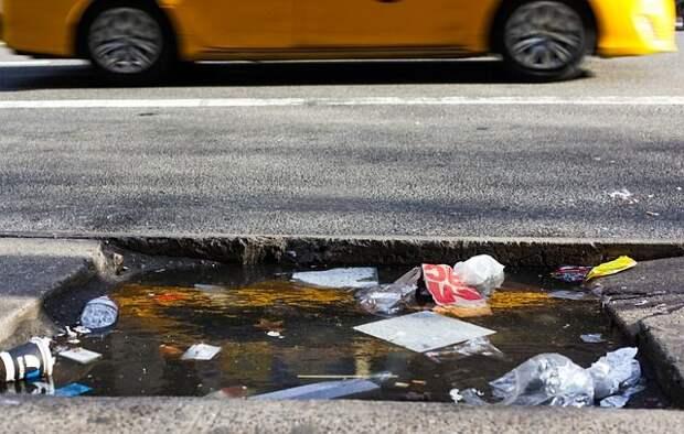 Скандальное современное искусство: «Нью-Йоркский мусор» Джастина Жиньяка