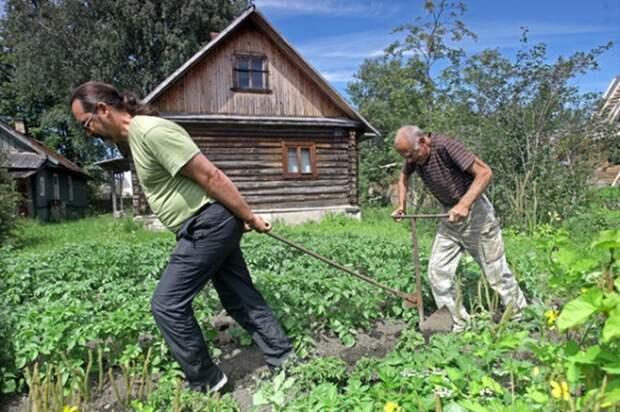 Дивный третий мир: «прокорми себя сам» в России становится реальностью