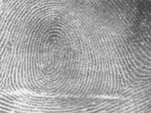 Дедовский метод. 13 сентября 1902 года в Великобритании впервые в качестве доказательства вины обвиняемого были использованы его отпечатки пальцев