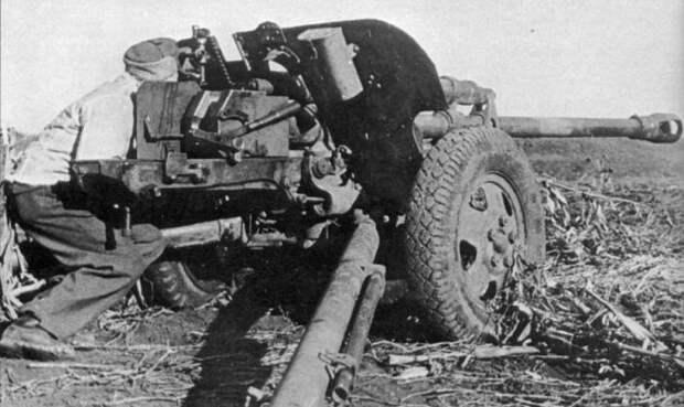 Фотохроника Великой Отечественной Войны