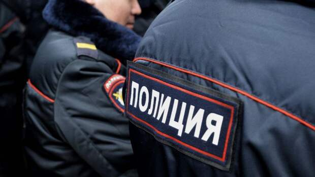 Похитившую ребенка няню задержали в Подмосковье