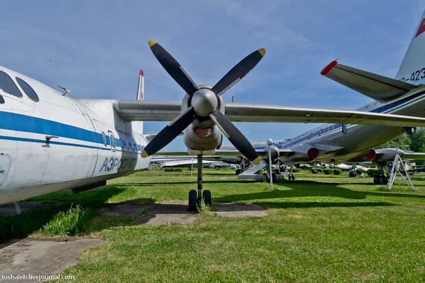 Aviation Museum-19