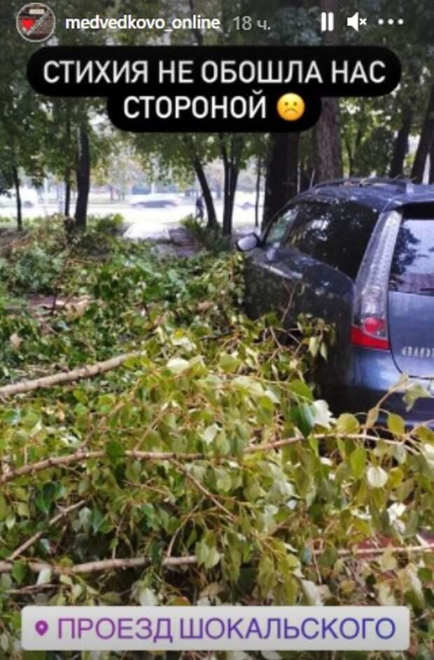 Фото дня: в проезде Шокальского ураган свалил деревья