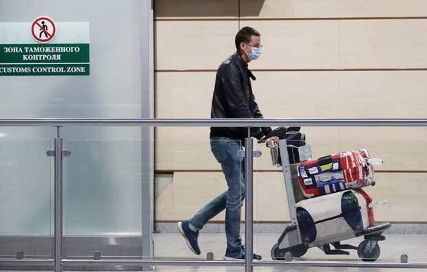 Граждане 52 стран смогут с 2021 года оформить электронную визу на въезд в Россию
