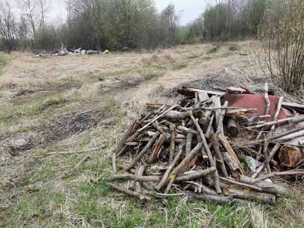 Раньше дрова из леса тащили, а теперь - в лес.