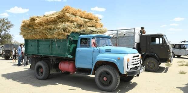 Т1,7 млрд выделили из резерва кабмина для спасения Кызылординской области от засухи