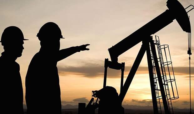 Путин зовет нефтяников вотраслевой институт добровольной стандартизации