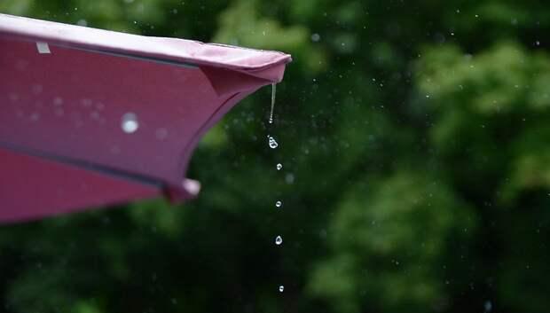 До плюс 30 градусов и дожди ожидаются к концу недели в Московском регионе