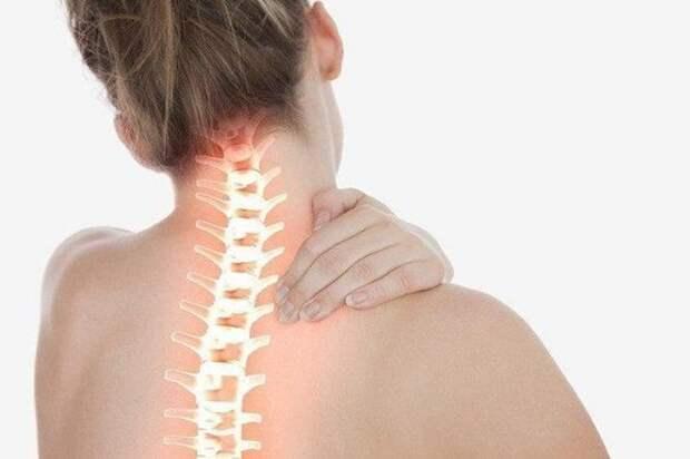 Лечение остеохондроза сабельником