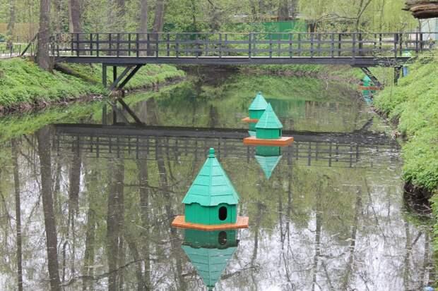 Домики для уток в Кузьминском парке спустили на воду