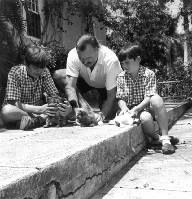 Эрнест Хемингуэй со своими сыновьями и котятами на Кубе, 1942 год. | Фото: commons.wikimedia.org.