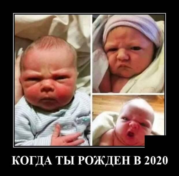 Демотиватор про рождение в 2020
