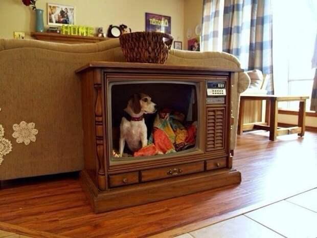 Старый телевизор - в дело!