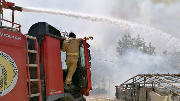 В Турции рассказали о количестве потушенных пожаров