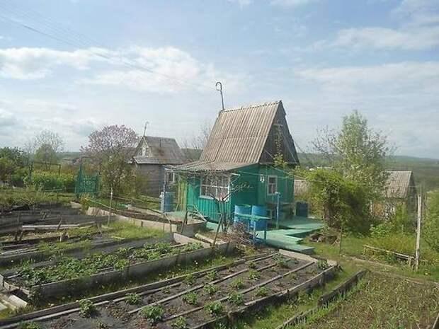 По 9000 рублей в месяц: что могут получить все, у кого есть дача