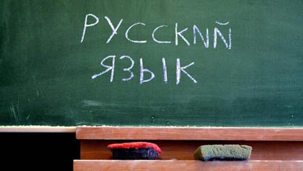 Без кешбэка и хайпа: сенатор от Крыма предложил отказаться от иностранных слов
