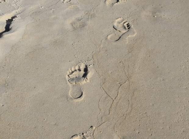 В Анапе умер ребенок, которого закопали в песок братья