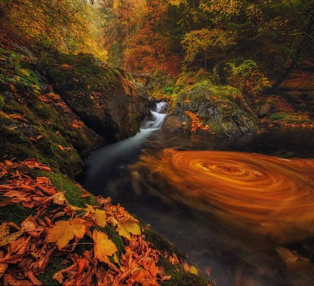 Болгария: старая река