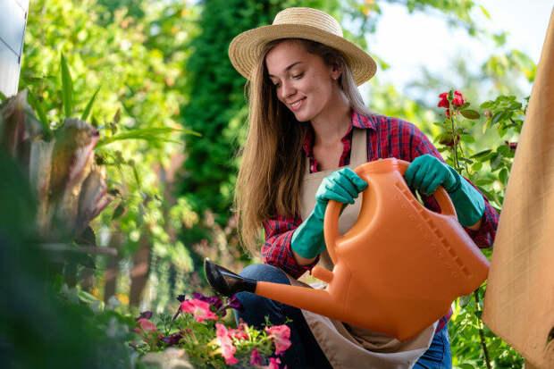 Главные мифы садоводства  