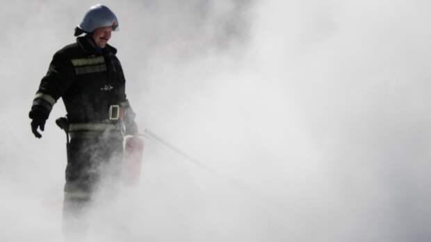 Крупный лесной пожар ликвидировали под Екатеринбургом