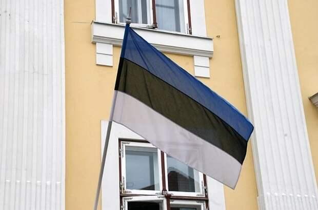 Эстония заявила о нарушении воздушных границ российскими истребителями