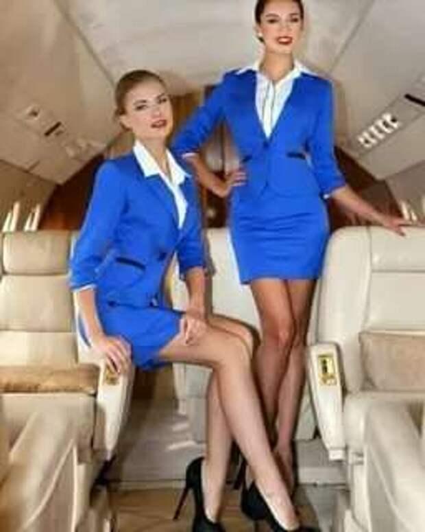 Ножки стюардесс. Подборка chert-poberi-styuardessy-chert-poberi-styuardessy-15320614122020-13 картинка chert-poberi-styuardessy-15320614122020-13