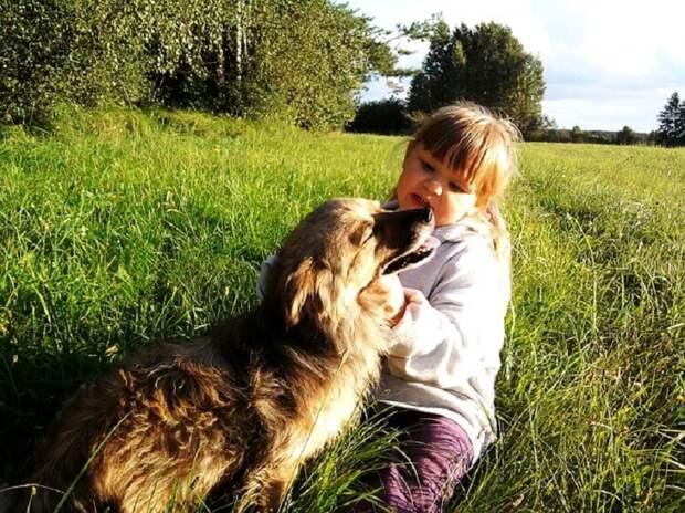 Мне было лет пять, когда мне палец прокусил соседней пес…
