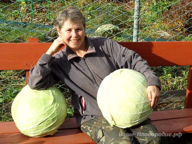 Как я пришла к природному земледелию