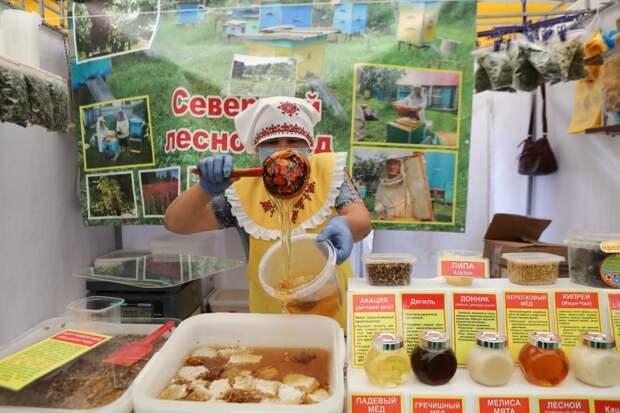 Выбираем лучший мед на ярмарках СЗАО