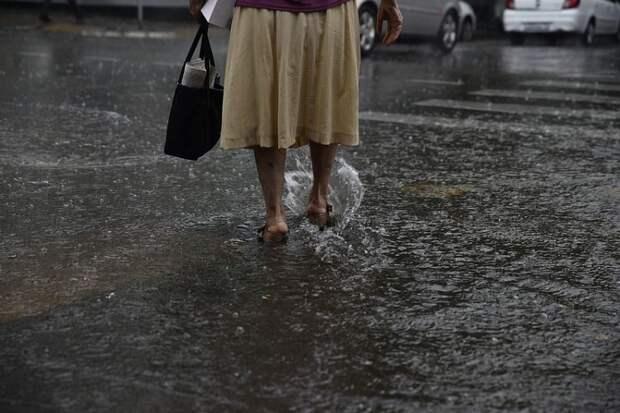 На Кубани прогнозируют дождливые выходные