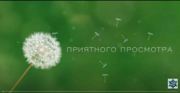 ШУРА / Русские комедии