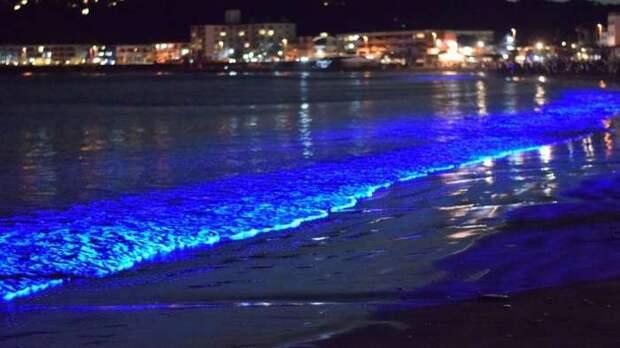 Удивительное световое шоу, созданное самой природой