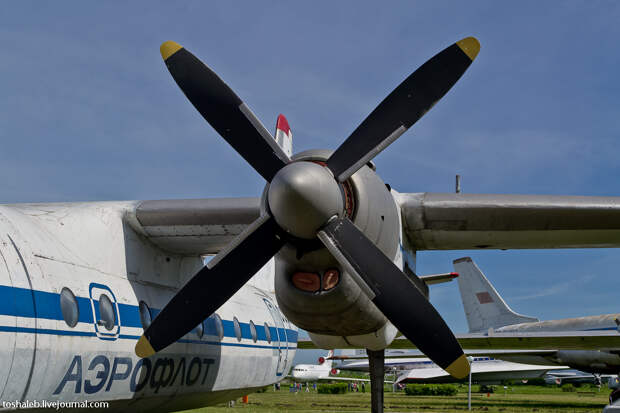 Aviation Museum-18