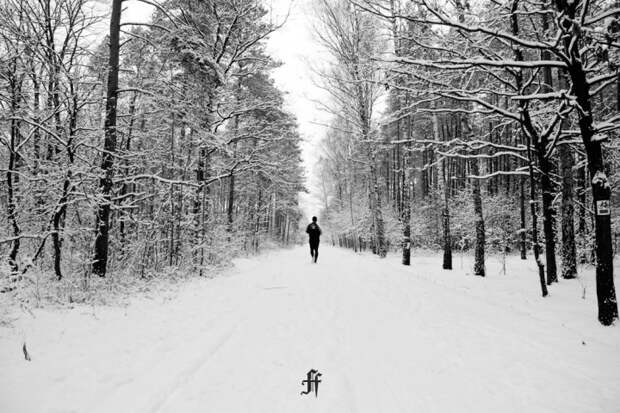 Как правильно бегать зимой. Изображение №1.